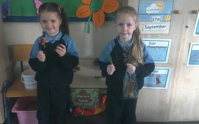 Amelia brought in crab apples. Ella-Jane had lots of leaves from different trees and conkers.